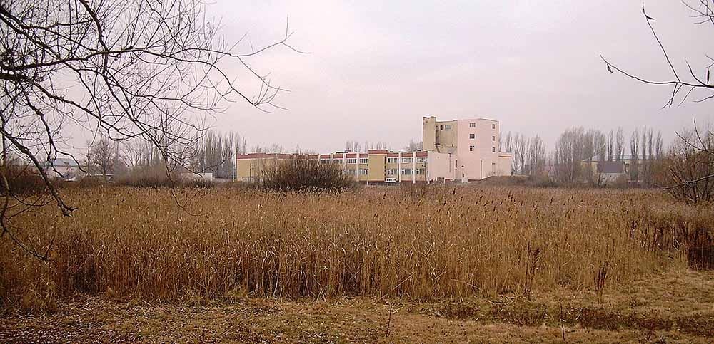Так выглядит ныне озеро Чистое, разделявшее Чуевку и Добринку.