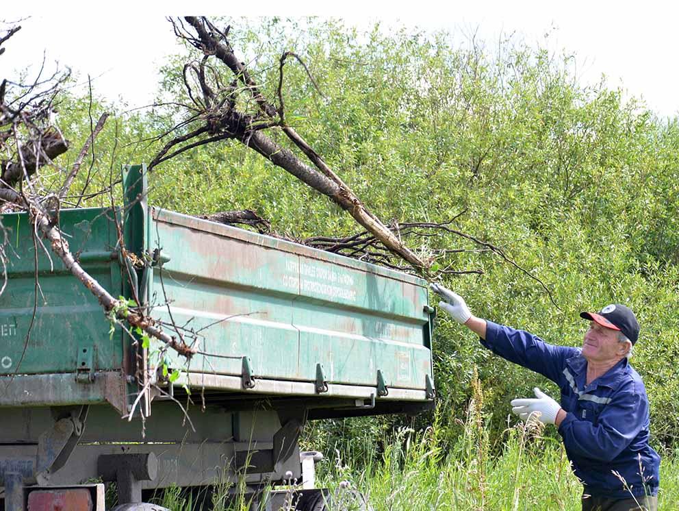 Крупные ветки мужчины сразу же грузили в тракторную тележку.