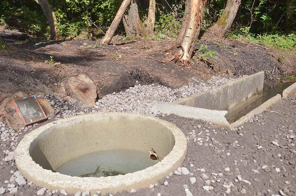 Бетонное кольцо установили, чтобы уровень воды в роднике всегда был высоким.