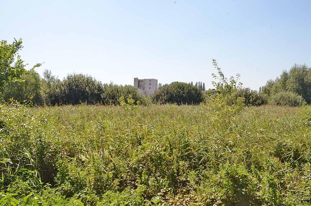 Ныне осушенное и сильно заросшее болото Бахтино за районным Домом культуры. Его окрестности являются исторической частью сегодняшней Добринки.