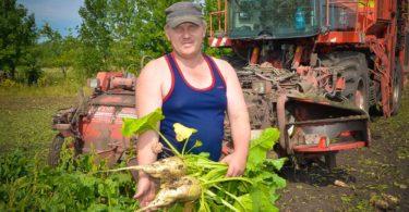 В руках у механизатора Юрия Тихонравова - корнеплоды урожая нынешнего года. Их вес не может не радовать.
