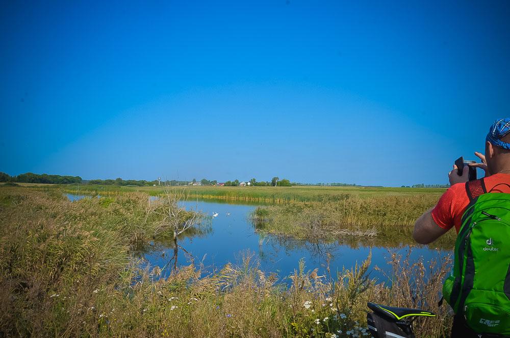 А неподалеку от Федоровки, на реке Плавутке, поселились лебеди. Только ради того, чтобы полюбоваться природой, стоит совершить велопрогулку.