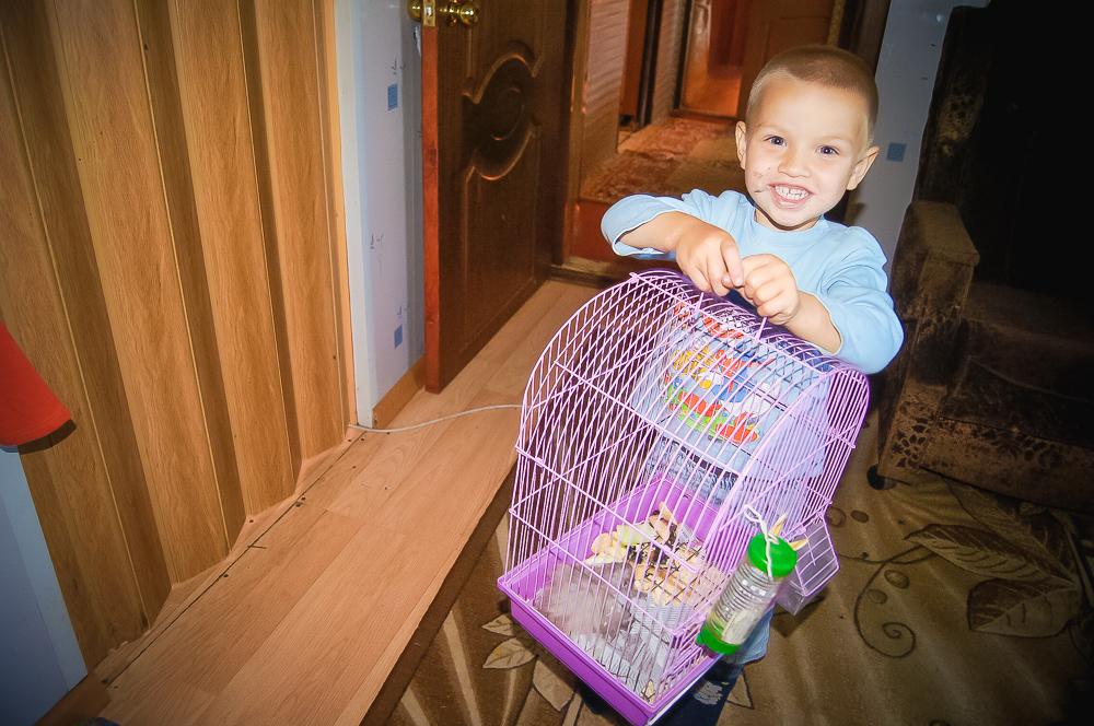 Живые уголки в детских садах приучают детей любить природу и заботиться о братьях меньших.