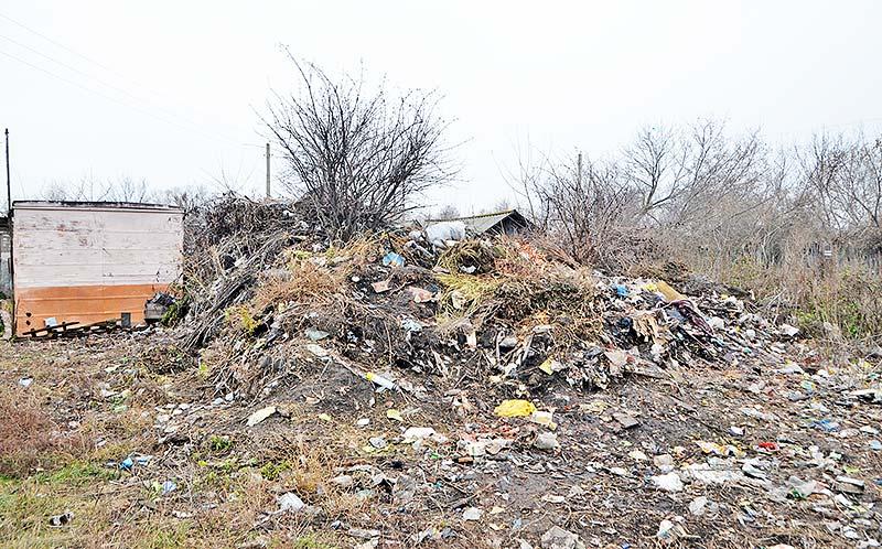 Не мудрствуя лукаво, многие петровцы выбрасывают мусор рядом со своими домами.