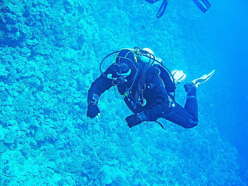 Липецкий подводный клуб организовал уже 64 экспедиции на Красное, Черное, Средиземное, Карибское моря, а также его участники погружались в Тихом, Атлантическом и Индийском океанах. География поездок постоянно расширяется.