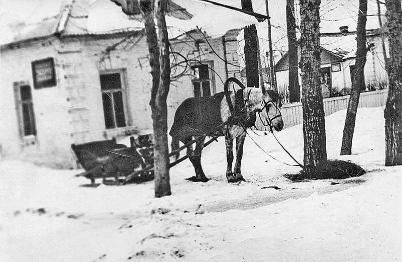 Этот домик располагался в центре Добринки. Ныне на его месте магазин стройматериалов. Именно отсюда юный Дмитрий Тупиков отправился на фронт.