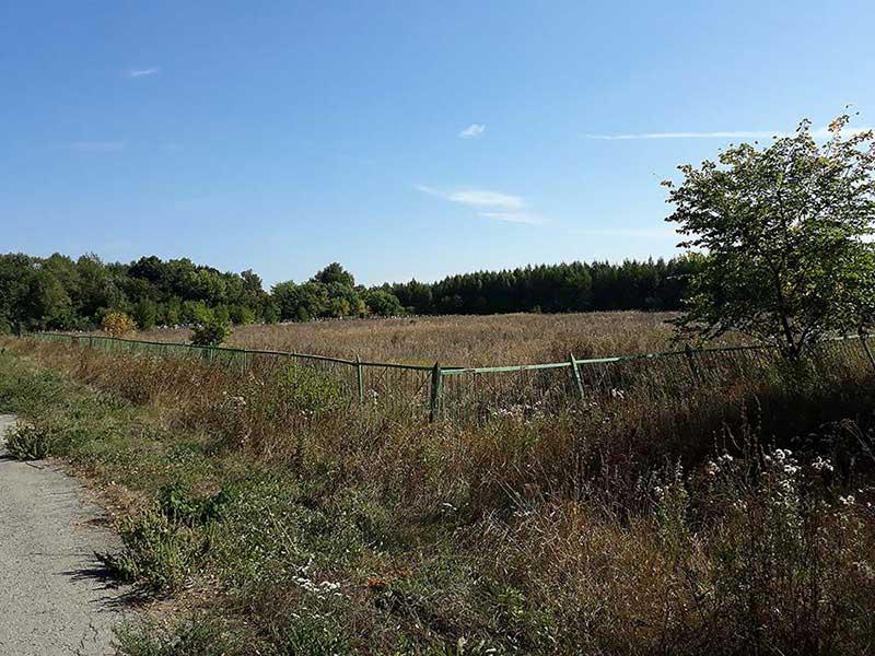 У кладбища в Среднем большой резерв. Посмотрите, сколько еще неиспользованной земли!